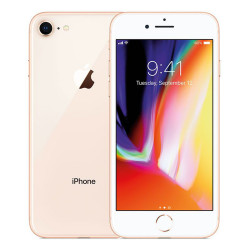 Apple iPhone 8 256GB Gold ITA