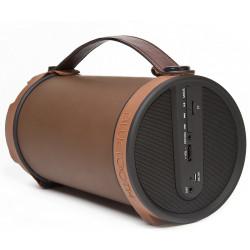 MiniTech S22 Outdoor Wireless Speaker