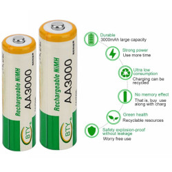BTY (LR06) Batterie Stilo Ricricabili 1,2V da 3000mAh